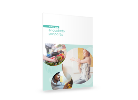 Your Guide to Postpartum Care (Printed Booklet-English)